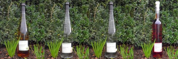 Brände und Liköre – Weingut Arnold Leick